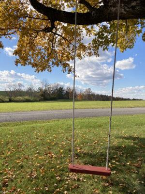 Home Farm Swing